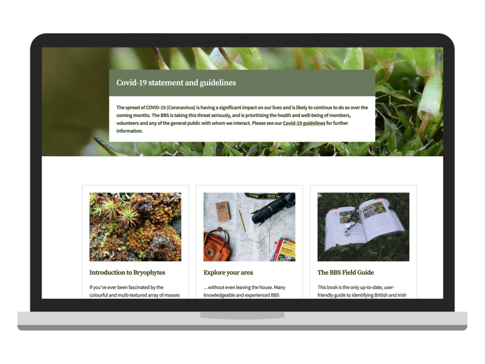 An example of high-end website design visualised on a laptop device