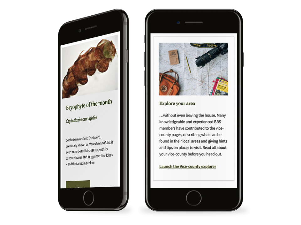 An example of high-end website design visualised on a mobile device